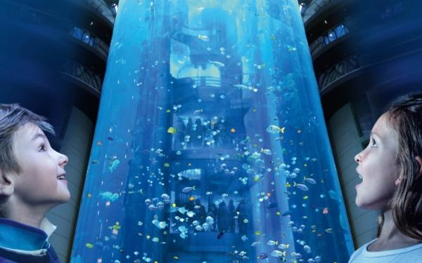 aquadom  sea life bis zu 18 € sparen im aquadom berlin
